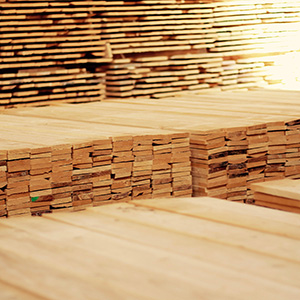 tabla_madera_pino_20y32